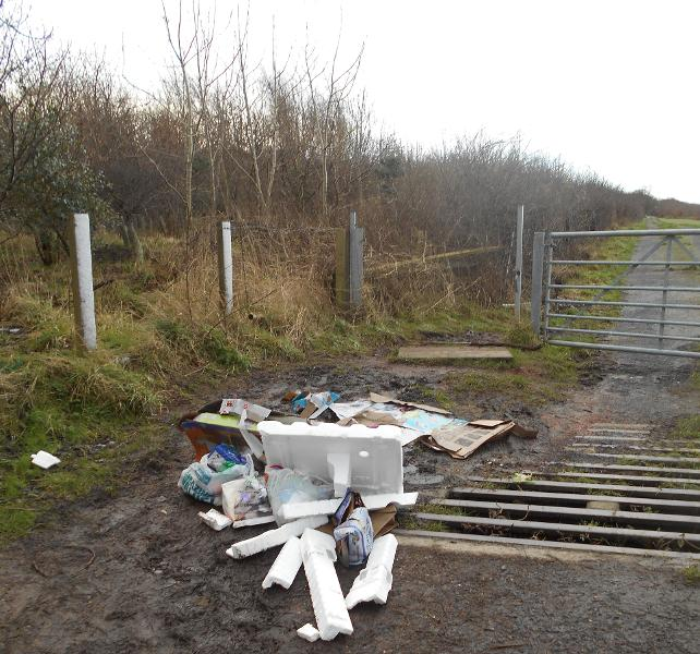 Amy Wall flytipping prosecution