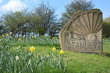 Stanley sign with daffodils