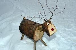 DCN Reindeer