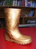 South Stanley infant school golden boot trophy