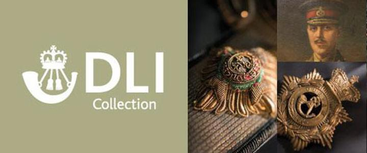 DLI collection