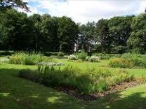 Annfield Plain Park Scenery