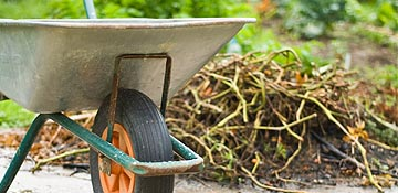 Sign up for garden waste collections for 2016