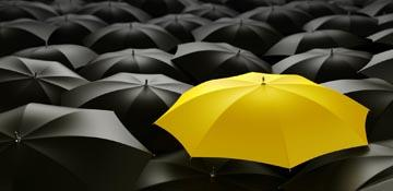 Yellow Weather Warning