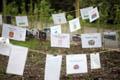 Wharton Park Opening Weekend Community garden