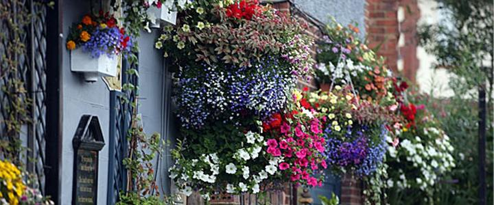 Durham Floral Displays 2016