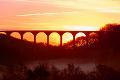 Derwent Valley AAP Hownsgill Viaduct