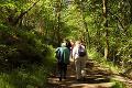 Derwent Valley AAP Walking in Derwentside