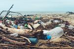 Plastic bottles on the beach Plastic pollution