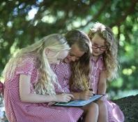Wharton Park primary workshops