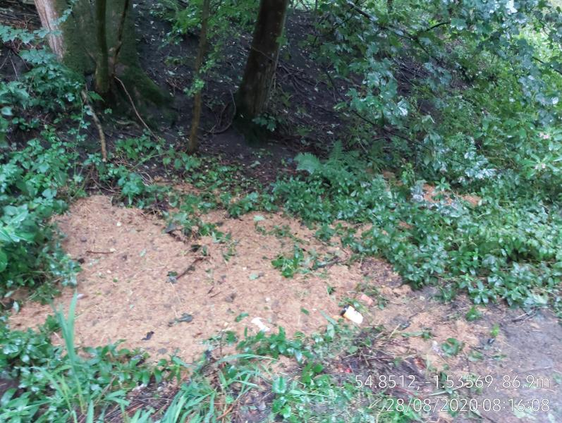 fly-tipping Forge Lane